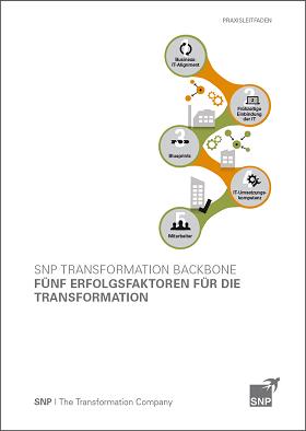 SNP 5 Erfolgsfaktoren für die Transformation.png